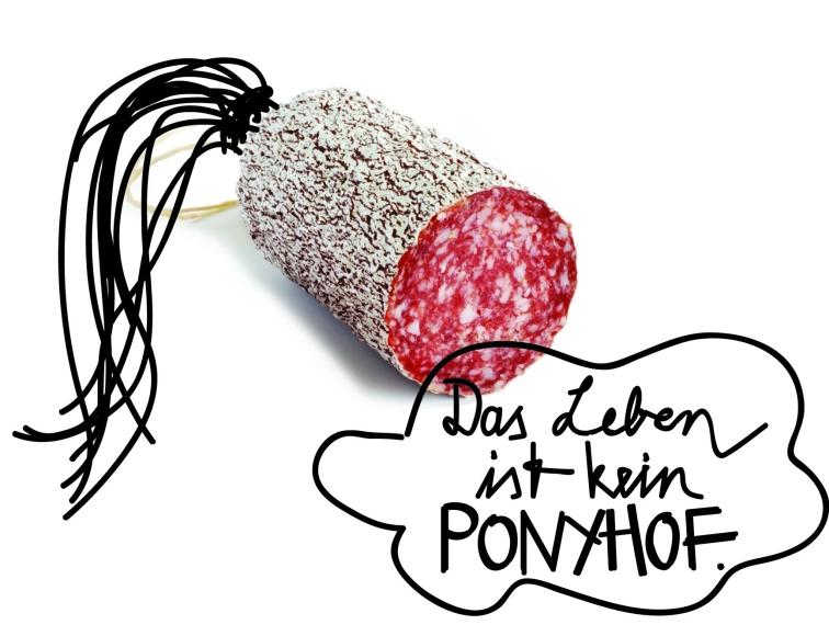 ponyhof-kl
